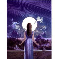 6538 The Moon's Wife – by Mick van Houten