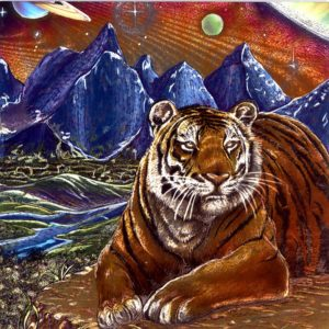 7085 Tiger & Mountains (print) – by L Gibbins of Advocate